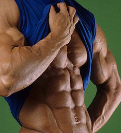 bodybuilder-abs